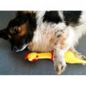 Kurczak gumowy dla psa